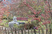 View over the garden fence on red bench, malus (ornamental apple tree)