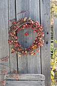 Autumn wreath of Malus branches (ornamental apple)