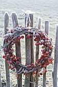 Frozen wreath of malus with fruits on stake fence