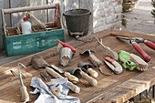 Clean garden tools and small appliances in autumn for winter