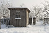 Shed in snowy cottage garden