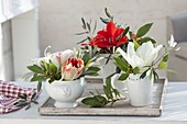 Small bouquets of amaryllis (Hippeastrum), laurel