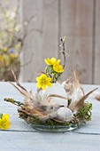 Small Easter decoration on glass bowl with feathers and moss with Eranthis