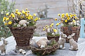 Easter decoration with homemade wicker baskets, planted with Tussilago