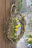 Narcissus 'Tete A Tete' (Narcissus) with moss in egg-shaped wreath