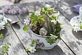 Small Easter decoration with anemone nemorosa in cup