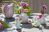 Small table decoration with Bellis and Bergenia