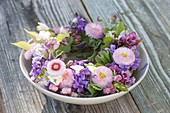Spring wreath in bowl with water, Bellis, Malus