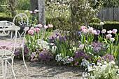 Beet through the seasons in spring