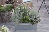 Zinc tub as herbal bed on the terrace