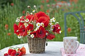Small bouquet of Papaver rhoeas (poppy) and Matricaria