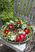 Wreath in copper bowl with water, Rosa 'Scarlet Glow'