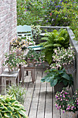 Shadow balcony with perennials and balcony flowers