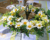 Wreath made with Argyranthemum, Leucanthemum (Marguerite)