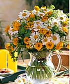 Argyranthemum Bucanthemum (Marguerite)
