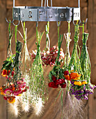 Hang flowers to dry