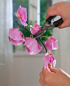 Cut back orchids after flowering