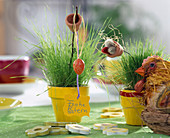 Miniature Easter grass seeded in small painted clay pots