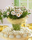 Bouquet from Argyranthemum frutescens (daisies))