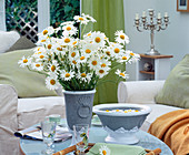 Argyranthemum frutescens (marguerite)