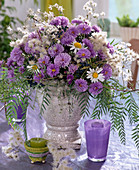 Aster autumn blackberries, Clematis clematis fruit stands, Argyranthemum daisies