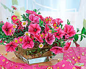 Glass bowl with summer flowers, Petunia surfinia