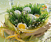 Wheatgrass seeded in a bowl and put in bag, decorated with Easter eggs