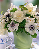 Anemone coronaria, Narcissus 'Mount Hood'