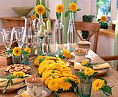 Table Decoration, Helianthus annuus (Sunflower 'Teddybär')