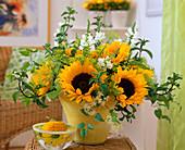 Helianthus annuus (sunflower), dill