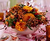 Chrysanthemum, Kappgrün, Rosa, Capsicum annuum, quercu