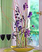 Delphinium (larkspur), Salvia (sage), Centaurea (knapweed)