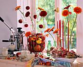 Kitchen window decoration, gerbera, malus (apple and ornamental apple)