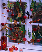 Window decoration of apples and foliage