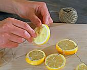 Lemon window decoration