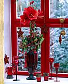 Amaryllis weihnachtlich geschmückt am Fenster