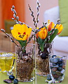 Tulipa 'flair' (tulip), roots washed out and in glasses