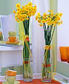 Narcissus jonquilla 'Martinette' (many-flowered dwarf daffodil)