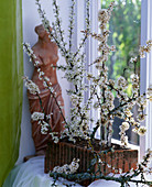 Prunus spinosa, sloe branches in glass tube, brick