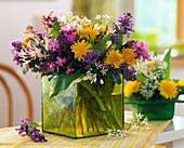 Taraxacum (dandelion), Silene (carnation), Allium ursinum