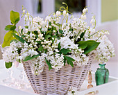Syringa (lilac), Convallaria (lily of the valley), Dicentra