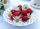 Bowl of Fragaria (strawberries)