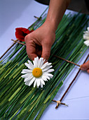 Making table runners out of barley and daisies