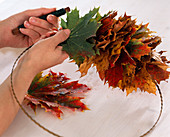 Maple wreath Acer tie on wire ring to wreath