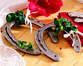Horseshoe with Oxalis deppei 'Iron Cross' (lucky clover)