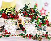 Ilex 'Alaska' (Holly), pots with decoupage, ribbon, cones