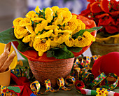 Calceolaria Hybrida slipper flowers, streamers, carnival decoration