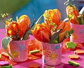 Tulipa 'Princess Irene' (tulip)