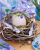 Ostrich egg in the nest