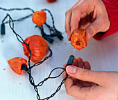 Physalis string of lights, putting Physalis over fairy lights